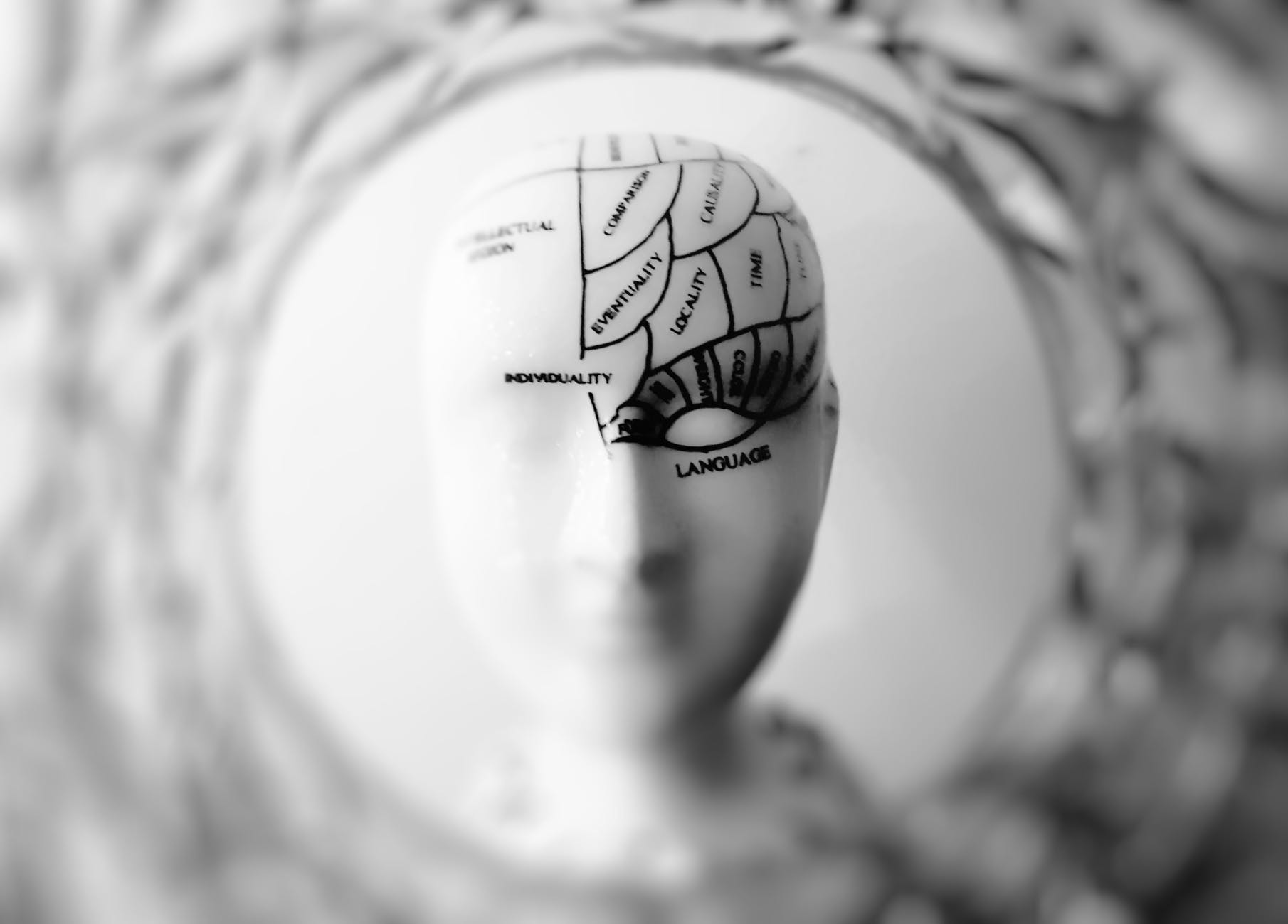 Daily Habits to Become More Intelligent 4