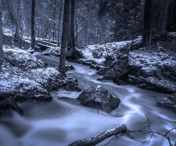 The Brook by Tennyson